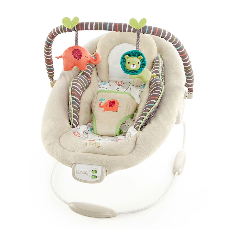 Bright Starts-Baby Bouncer